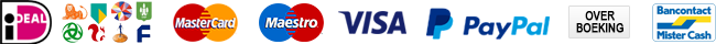 pay-logo
